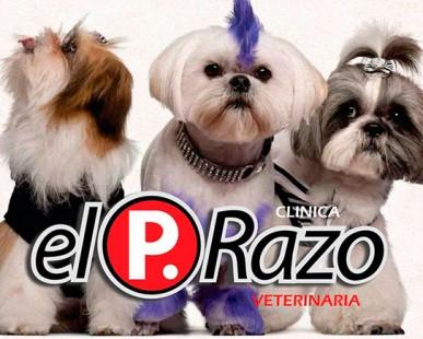 Imagenes de Galería de El Prazo Veterinaria