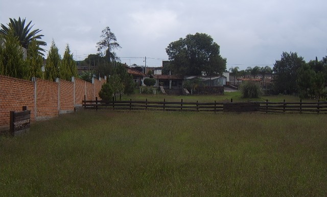 SV600311