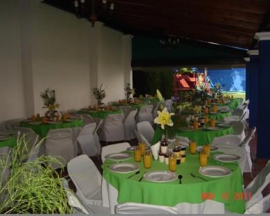 Imagenes de Galería de Jardín de Fiestas Mundo de Juguete